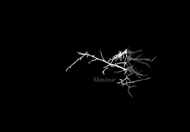 Mminor_header_02